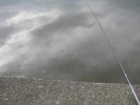 ワカサギ釣り