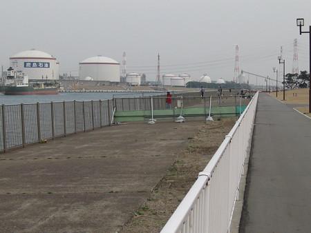港公園-20130308 (3)
