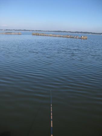 霞ヶ浦で釣り