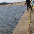 Photos: 霞ヶ浦 高崎付近 ワカサギ釣り風景