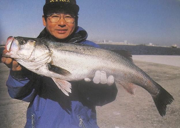Photos: ダイワ釣魚図鑑-改訂版 (7)