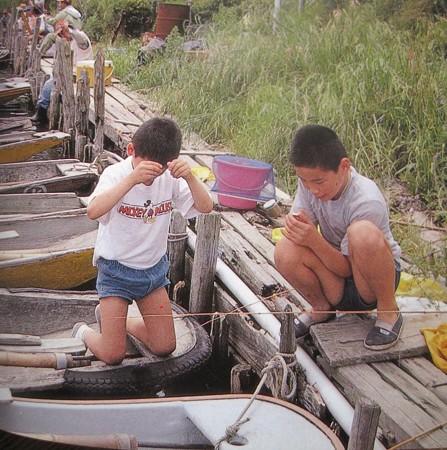 ダイワ釣魚図鑑-改訂版 (9)