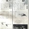 Photos: 若き、奥山文弥さんの記事