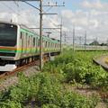 東北本線 E231系 普通列車