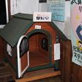Photos: 芦ノ牧温泉駅 駅長室