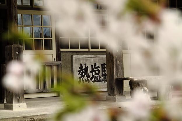 桜と熱塩駅
