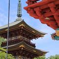 写真: 板橋不動尊 楼門と三重塔