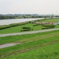 写真: 江戸川河川敷