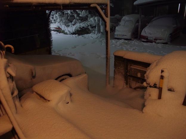 Photos: 雪だ!