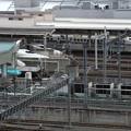 東京駅 新幹線ホーム