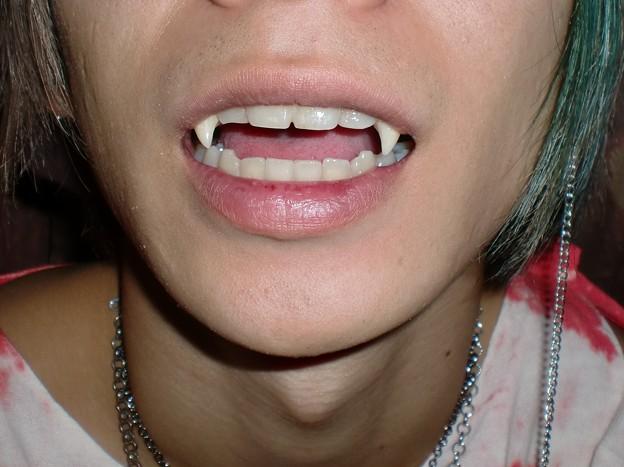 FANG SHOP 付け牙 N-089