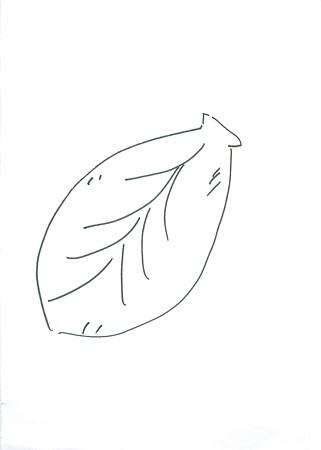 konohasenbei (2)