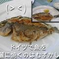 Photos: 3055_fish