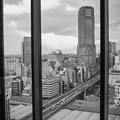 渋谷の景色