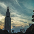 Photos: 新宿シルエット