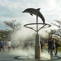 写真: 美ら海水族館のそばのミストイルカ君3