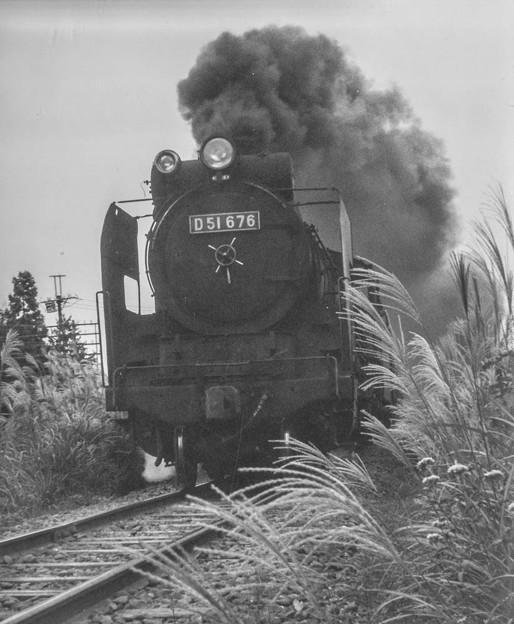 Photos: D51が来た!@昭和40年代初頭の八高線