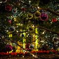 Photos: クリスマスツリーのオーナメント2@横浜赤レンガ倉庫2012