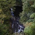 天岩戸神社の西本宮と東本宮の間を流れる川