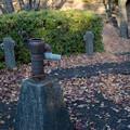 公園の井戸