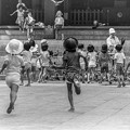 Photos: 鳩に群がる子供たちの躍動感
