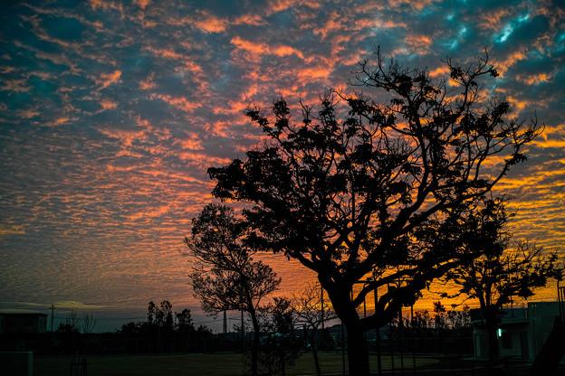 沖縄の朝焼け1@SIGMA-DP2Merrill