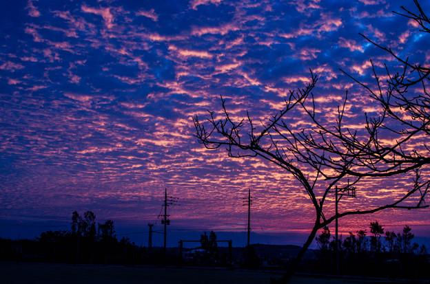 Photos: 沖縄の朝焼け5@NIKON-D5100