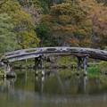 京都渉成園の侵雪橋(Shin-setsu bridge)