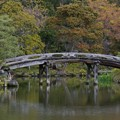 Photos: 京都渉成園の侵雪橋(Shin-setsu bridge)