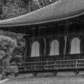 Photos: 雨の銀閣寺