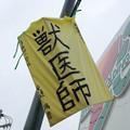 Photos: 獣医師!