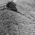 萱葺き屋根