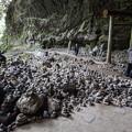 Photos: 八百万の石積み