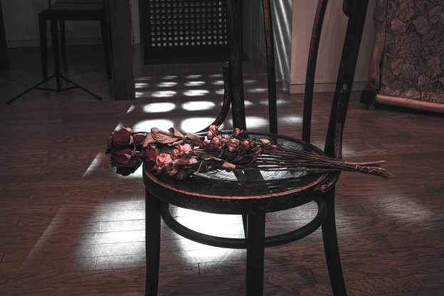 a dried flower-3