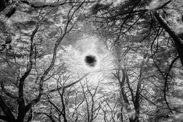 Photos: ブラックホールが出現した(爆)