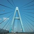 Photos: 青い橋