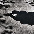 Photos: 撮ってる横の地面に顔が(爆)