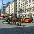 観光客向けの馬車かな@ウィーン2005