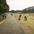 くつろぎの公園