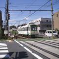 Photos: ああ、電車が来てるのに渡っちゃうのか!
