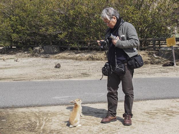 兎と記念撮影