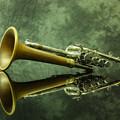 木製のベルが着いた珍しいPiccolo Trumpet