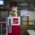 Photos: 左手挙げの招き猫と玉丼の値段@高山昭和館-8
