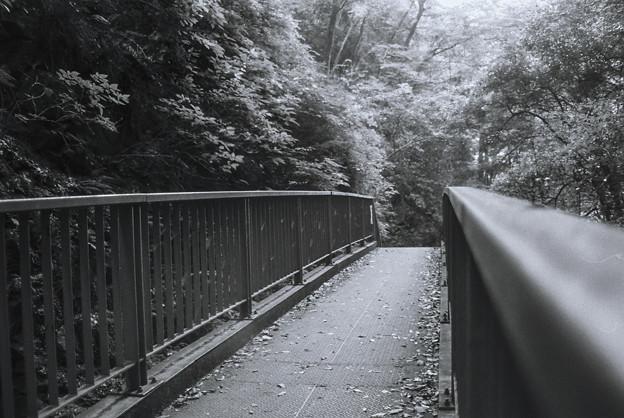 塩川の滝に通じる通路