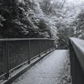 Photos: 塩川の滝に通じる通路