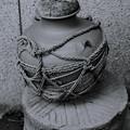 Photos: 壺の縄の描写が気に入りました