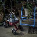 青と赤、そして三輪車に見えて四輪車(爆)