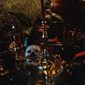 写真: 魔女達のパーティが始まる