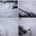 Photos: 雪が凄いので