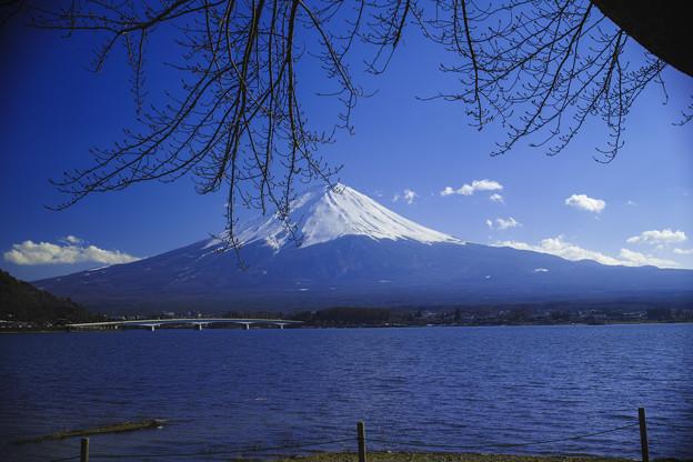 河口湖畔からの富士山2014/03/22